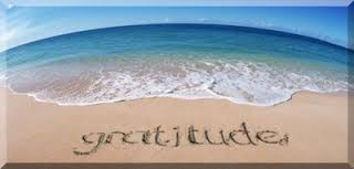 Happy World Gratitude Day! What are you most thankful for??
